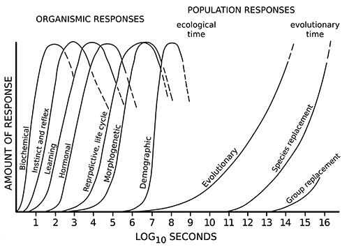 figure 06 3 timescales of responses to change 500