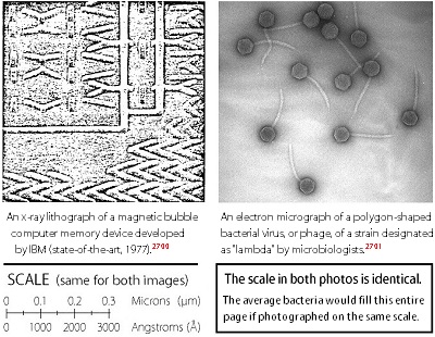 figure 16 3 microstructure in machine and biological lifeforms 400