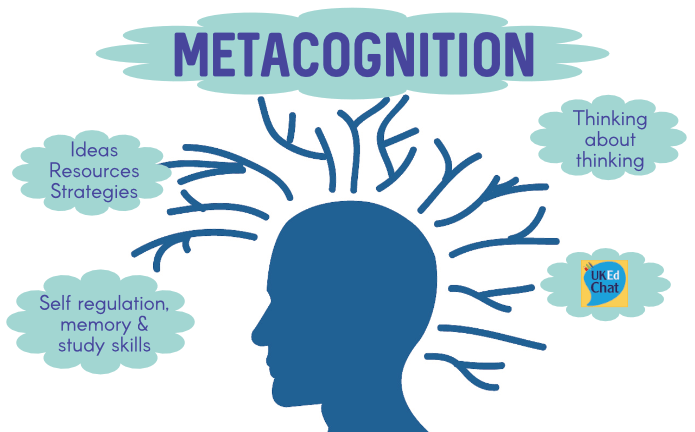 metacognition feature